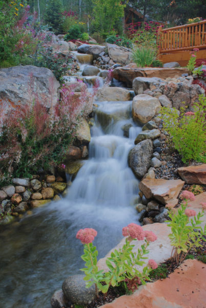 Close up of the falls, with Colorado columbines, Astor Lupin day lily, and aquatic plants with granite boulders and sandstone steps